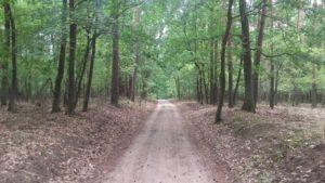 Wielkopolski Park Narodowy - Pętla Komornicka