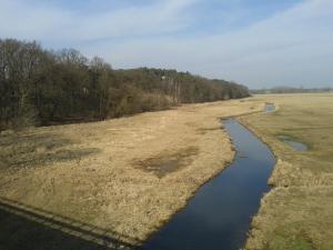 Międzychód - zalew rzeki Warta